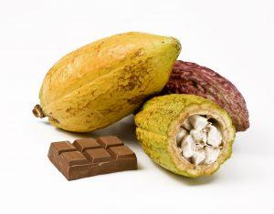 photo of cacao pod